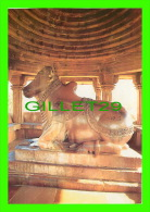 INDIA - INDE - NANDI TEMPLE A VAHANA (VICHLE) OF LORD SHIVA BUILT IN 1001 A.D. - - Inde