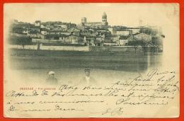 CPA 43 BRIOUDE Haute Loire - Vue Générale (a Voyagé En 1900) - Brioude