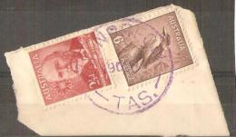 TASMANIA -  Postmark, CDS - NEW NORFOLK  In Purple - 1853-1912 Tasmania
