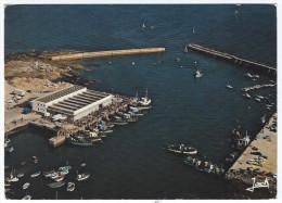 LESCONIL (29) - Le Port De Pêche - Lesconil