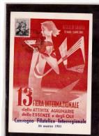 TEM3049     -    REGGIO CALABRIA  26.3.1961     /     XIII  FIERA INTERNAZIONALE AGRUMARIA - Agriculture