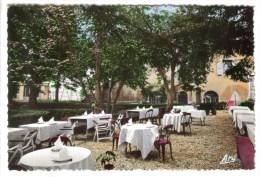 CPSM SAINT ANDRE LES ALPES (Alpes De Haute Provence) - Grand Hôtel Du Parc : Un Coin Du Parc - Francia