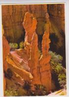 CPM BRYCE CANYON, PINNACLE ROKS - Bryce Canyon