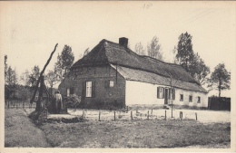 Kasterlee     Opperhoeven Van Leenhoof  Terlo                Scan 5987 - Kasterlee