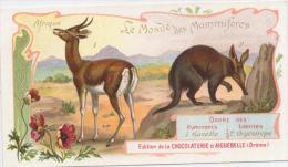 AIGUEBELLE  Le Monde Des Mammiferes  GAZELLE Et ORYCTEROPE - Aiguebelle
