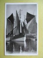 Les Thonniers Au Port. - Concarneau