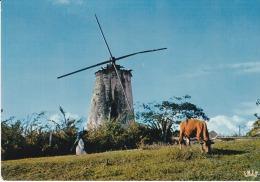 Francia--Guadeloupe--Vieux Moulin A Marie-Galante - Moulins à Vent