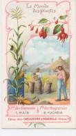 AIGUEBELLE Le Monde Des Plantes MAIS Et FUCHSIA - Aiguebelle