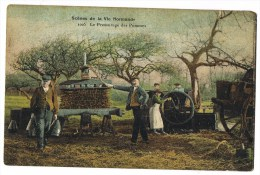Scènes De La Vie Normande  1005 Le Pressurage Des Pommes (2 Scans) - Francia