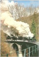 TRAIN Suisse - EISENBAHN Schweiz - Chemin De Fer BLONAY - CHAMBY - Quintuple Locomotives à Vapeur - (pont, Viaduc) - Trains