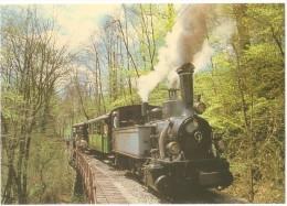 TRAIN Suisse - EISENBAHN Schweiz - BLONAY-CHAMBY - Le Petit Train - Locomotive à Vapeur (N° 6) - Trains