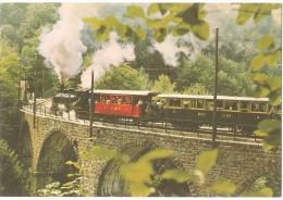 TRAIN Suisse - EISENBAHN Schweiz - BLONAY-CHAMBY - Viaduc De La Baye De Clarens - Locomotive G 2 X 2/2 105 - Trains