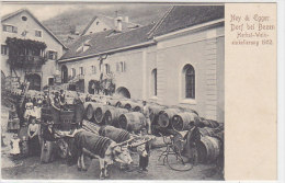 "Presso Bolzano: Cart.pubbl. Di Ney & Egger - ""Herbst-Weineinkellerung"" 1902 - Rara    (140123) - Bolzano (Bozen)"