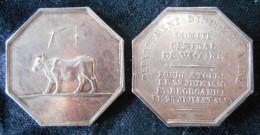 1839-MEDECINE- COMITE CENTRAL DE VACCINE D´INDRE & LOIRE  RARE - JETON D´ARGENT - Professionals / Firms