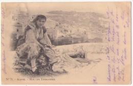(Algérie) 189, Alger, Vollenweider 71, Sur Les Terrasses, Dos Non Divisé - Alger