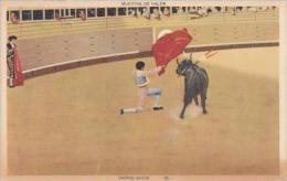 Bull Fight Daring Show Muestra De Valor 1941