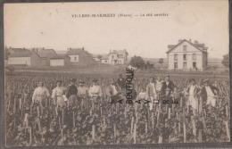 51----VILLIERS MARMERY--La Cité Ouvriere---vignes--animé - Autres Communes