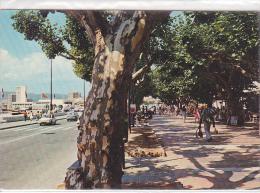 22270 Saint Raphael St -le Cours / StRA15 Sopico - - Saint-Raphaël