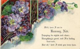 Illustrée Dorée Et Gaufrée : Souvenir De KEARNEY NEBRASKA . 1909 - Kearney