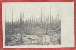 HOUTHULST - WALD ? - Flandre - Flandern - Carte Photo Militaire Allemande - Guere 14/18 - 3 Scans - Zonder Classificatie