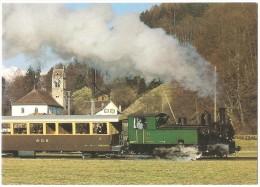 TRAIN Suisse - EISENBAHN Schweiz - WILDERSWIL - Train Avec Locomotive à Vapeur G 3/4 11 - Trains