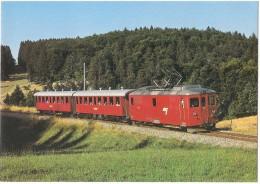 TRAIN Suisse - EISENBAHN Schweiz - LA COMBE-TABEILLON - Automotrice à Bagages (autorail) De 4/4 401 - Photo P. Hofmann - Trains
