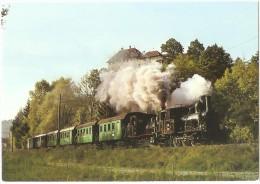TRAIN Suisse - EISENBAHN Schweiz - LAUPEN - Locomotive à Vapeur E 3/3 N° 1+11 - Photo Peter Willen - Trains