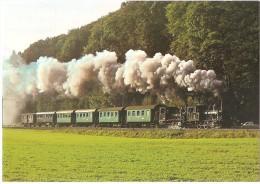 TRAIN Suisse - EISENBAHN Schweiz - LAUPEN - Locomotive à Vapeur E 3/3 N° 1+11 - Après L´arrêt De Saanebrücke - Trains