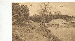 Bouwel - De Springberg - Paysage