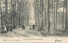 Dreef aan �t Kasteel van Bouwel - 1907