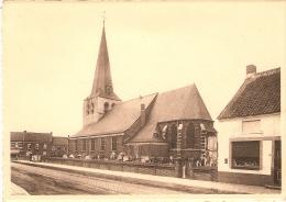 Olen : De Sint Martinus Kerk - Olen