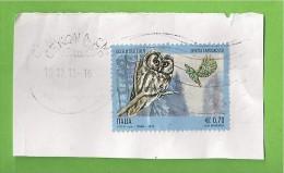 ITALIA REPUBBLICA UCCELLI DELLE ALPI € 0,70  2013  SU FRAMMENTO USATO - 6. 1946-.. Repubblica