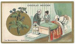 Chromo Publicitaire Chocolat MEXICAIN - La Bourrache - Sudorifique - F. Champenois , Paris - Belle Dorure - Chocolat