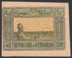 Azerbaijan, 40 K. 1919, Sc # 3, Mi # 3y, MNH - Azerbaïjan
