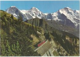 TRAIN Suisse - EISENBAHN Schweiz - SCHYNIGE PLATTE Bergbahn Schynige Platte, Eiger-Mönch-Jungfrau, Autorail Tramway Berg - Trains