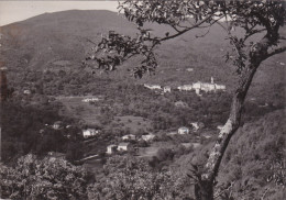 BORMIDA   - VEDUTA GENERALE DEL PIAN SOPRANO  VG 1955  AUTENTICA 100% - Savona