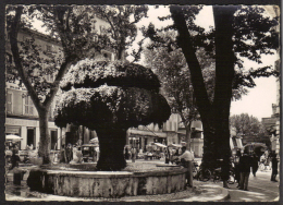 CPSM Gf .Dépt . 13. SALON De PROVENCE : La Fontaine Moussue. (Animation,Car, Voiture,Moto) - Salon De Provence