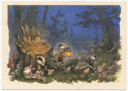 USSR Russia Stationery Card 1962 Mushrooms Bunny Badger Forest Pilze Hase Dachs Wald °PK0099 MNH - Pilze