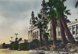 Monte Carlo - La Terrasse Et Le Casino.  B-2843 - Terraces