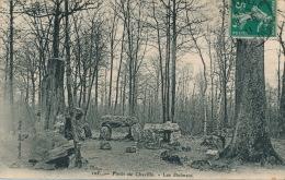 Forêt De CHAVILLE - Les Dolmens - Chaville