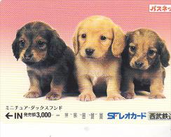 JAPON / TITRE DE TRANSPORT TOKYO / - Honden