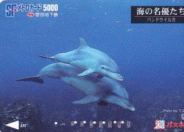 JAPON / TITRE DE TRANSPORT TOKYO / - Dolphins