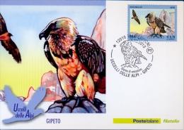 Italia 2013 FDC Maximum Card Birds Of Alps: Bearded Vulture (Gypaetus Barbatus) - Adler & Greifvögel