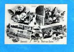 70 PORT SUR SAONE MULTIVUES - France