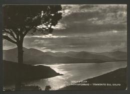 Livorno - Provincia - Isola D'Elba - Portoferraio - Tramonto Sul Golfo - Formato Grande - Viaggiata 1955 - Livorno