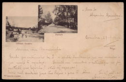 COIMBRA / PORTUGAL. Postal Tipo Gruss, Lembrança De Coimbra. Choupal Lavadeiras E Alameda Old Postcard - Coimbra