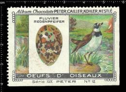 Old Original Swiss Poster Stamp (advertising Cinderella, Label) Nestle Bird Nest Egg Vogel Eier Plover Regenpfeifer - Birds