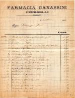 1894  FATTURA -  CENESELLI ROVIGO FARMACIA GANASSINI - Italia