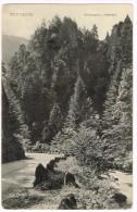 I1797 Todtmoos - Wildenstein - Wehratal / Non Viaggiata - Todtmoos