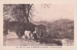 Amélie Les Bains- ** Belle Carte Animée  ** Ed. Deville N°147 - Frankreich
